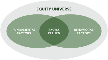 Equity Universe